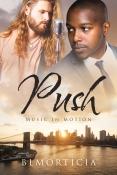 PushFS_v1